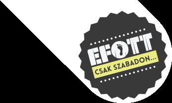 efott_logo