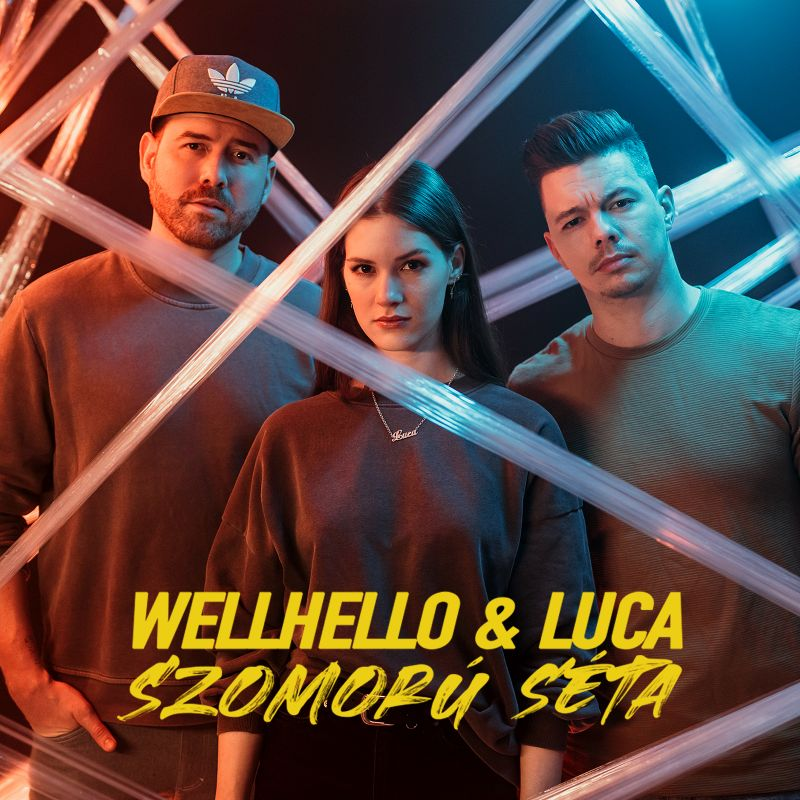 wellhello_luca_szomoru_seta